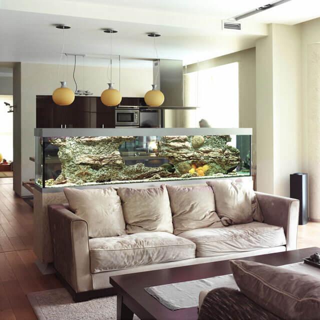 кухня с гостиной планировка фото