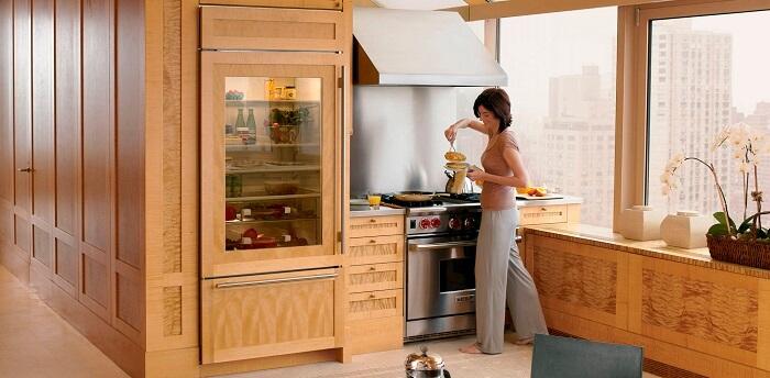 необычный двухкамерный холодильник