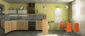 Разновидность панели на потолок на кухне